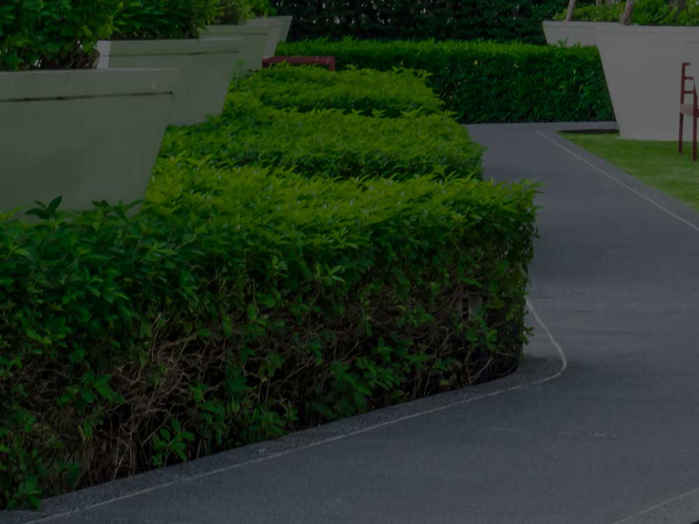 Palm Beach County Commercial Landscaping